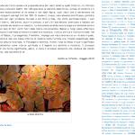 1005 Arte in Molise da Il Ponte intervista 3